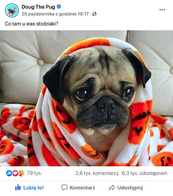 kup facebook like - wypromowani