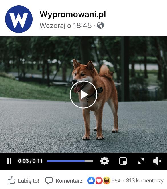 kup facebook wyświetlenia na wypromowani.pl