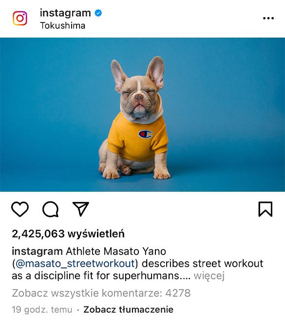 kup komentarze na instagramie wypromowani.pl